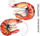 shrimps. prawns isolated....   Shutterstock . vector #445437361