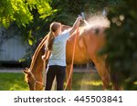 Horse Enjoying The Shower...