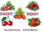 set of red berries. hand draw... | Shutterstock .eps vector #445538641