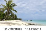 mystery island  vanuatu... | Shutterstock . vector #445540045