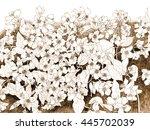 jasmine flowers watercolor hand ... | Shutterstock . vector #445702039