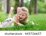 Stock photo little girl playing with white rabbit in summer day outdoor 445726657