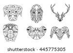 black and white trendy... | Shutterstock .eps vector #445775305