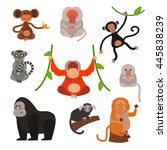 monkey vector illustration | Shutterstock .eps vector #445838239