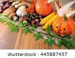 Autumn Fruits Like Pumpkin ...