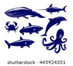collection of sea animals... | Shutterstock .eps vector #445924351