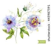 watercolor  vector  tropical ... | Shutterstock .eps vector #445987591