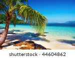 tropical beach  wai island ... | Shutterstock . vector #44604862