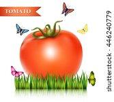 red fresh tomato on the grass... | Shutterstock .eps vector #446240779