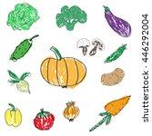 set of various doodles  hand... | Shutterstock .eps vector #446292004