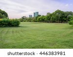 public park in downtown evening ... | Shutterstock . vector #446383981