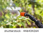 Spraying the leaves of trees against pests with chemicals - stock photo