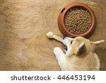 a corgi dog biting a dog bone... | Shutterstock . vector #446453194