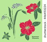 vector set of  petunias and... | Shutterstock .eps vector #446453224