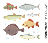 set fish isolated. | Shutterstock . vector #446473369