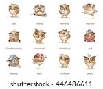 set vector stock illustrations... | Shutterstock .eps vector #446486611