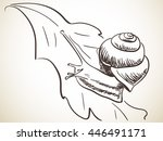 sketch of snail  hand drawn... | Shutterstock .eps vector #446491171