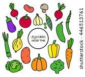 set vegetables tomato  pumpkin... | Shutterstock .eps vector #446513761