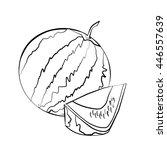 watermelon   Shutterstock .eps vector #446557639