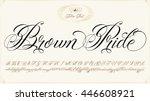 handmade vector calligraphy... | Shutterstock .eps vector #446608921