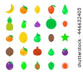 exotic tropical fresh fruits... | Shutterstock .eps vector #446632405