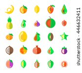 exotic tropical fresh fruits... | Shutterstock .eps vector #446632411
