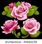 Pink Roses Set