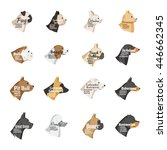 vector dog breeds icons... | Shutterstock .eps vector #446662345