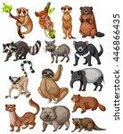 set of many wild animals... | Shutterstock .eps vector #446866435
