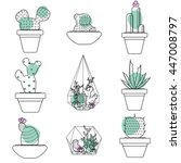 set of succulent plants and...   Shutterstock .eps vector #447008797