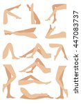 woman legs in different poses... | Shutterstock .eps vector #447083737