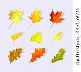 set autumn leaves of maple ... | Shutterstock .eps vector #447159745