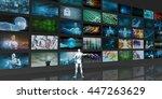 video streaming entertainment... | Shutterstock . vector #447263629