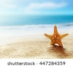 starfish on the beach and ocean ...   Shutterstock . vector #447284359