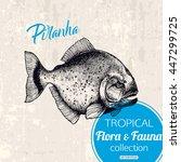 exotic tropical fish piranha... | Shutterstock .eps vector #447299725