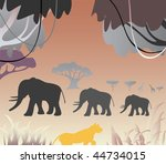 africa  sunset  with wild...   Shutterstock . vector #44734015