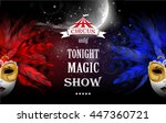 circus  carnival or funfair... | Shutterstock .eps vector #447360721