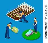 gardener trimming plants.... | Shutterstock .eps vector #447515941