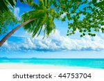 Beautiful Tropical Beach With...