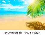 beautiful sunny beach. view of... | Shutterstock . vector #447544324