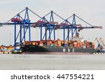 klaipeda lithuania june 28 msc... | Shutterstock . vector #447554221