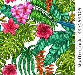 hand drawn color tropical... | Shutterstock .eps vector #447594109