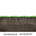 soil with roots and grass... | Shutterstock . vector #447629257