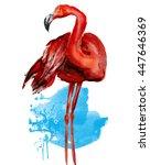 flamingo.watercolor | Shutterstock . vector #447646369
