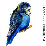 watercolour parrot. budgerigar | Shutterstock . vector #447647959