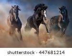 black stallions run gallop in... | Shutterstock . vector #447681214