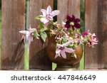 Floral Scene In The Garden....