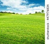 seasonal backgrounds. beauty... | Shutterstock . vector #447976834