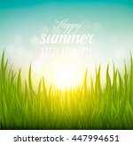 beautiful summer background... | Shutterstock .eps vector #447994651