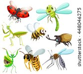 small insects and creatures... | Shutterstock .eps vector #448046275